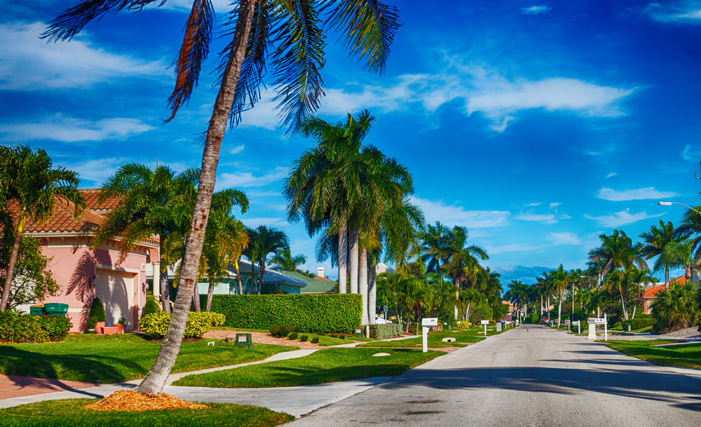 Beautiful palm tree-lined street in Florida