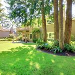 Summer back yard with large shade trees